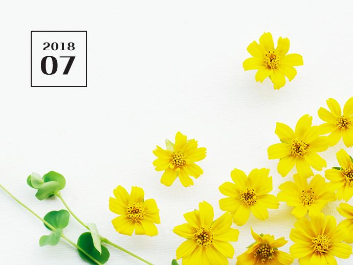 노란우산공제 [2018.07] - 노란우산 희망더하기+