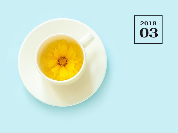 노란우산공제 [2019.03] - 노란우산 희망더하기+