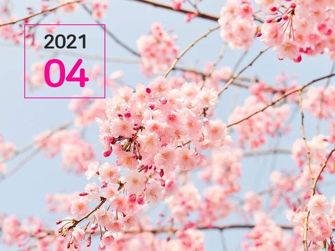 노란우산공제 [2021.04] - 노란우산 희망더하기+
